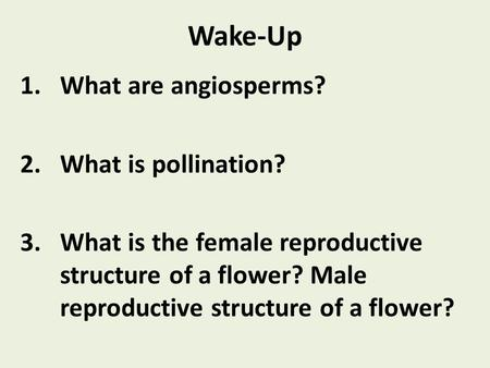 Wake-Up 1.What are angiosperms? 2.What is pollination? 3.What is the female reproductive structure of a flower? Male reproductive structure of a flower?
