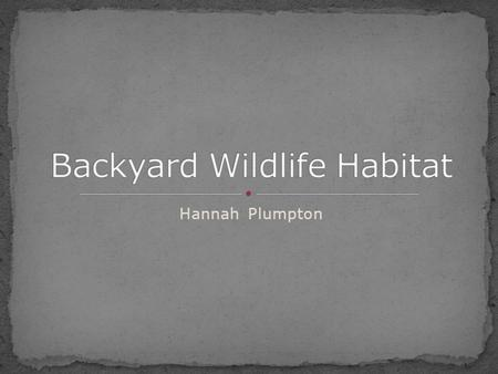 Hannah Plumpton. Private landowners own 70% of land Most wildlife depend on landowners From balcony to farms Everyone can make a difference.