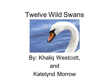 Twelve Wild Swans By: Khaliq Westcott, and Katelynd Morrow.