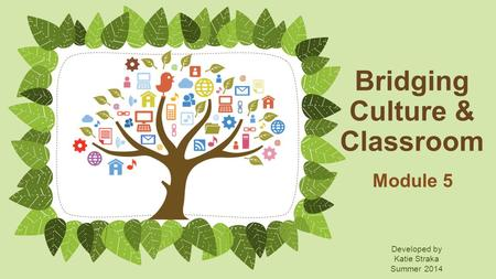 Bridging Culture & Classroom Module 5 Developed by Katie Straka Summer 2014.