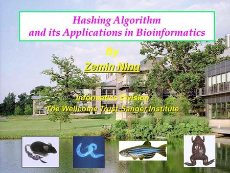 Hashing Algorithm and its Applications in Bioinformatics By Zemin Ning Informatics Division The Wellcome Trust Sanger Institute.