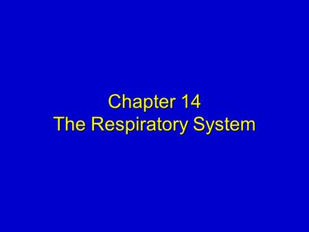 Chapter 14 The Respiratory System. Mosby items and derived items © 2008 by Mosby, Inc., an affiliate of Elsevier Inc. Slide 2 STRUCTURAL PLAN  Basic.