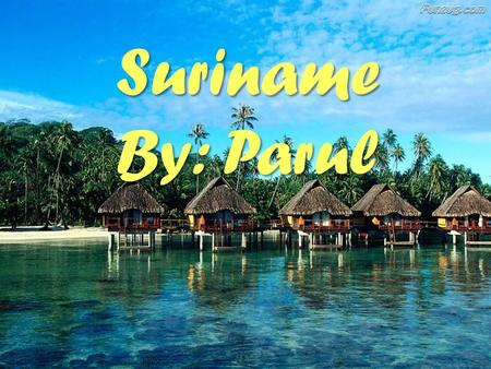 Suriname By: Parul. Fast Facts Capital: Paramaribo Largest City: Paramaribo Currency: Suriname Dollar Land: 63,038 sq miles Official language: Dutch Population: