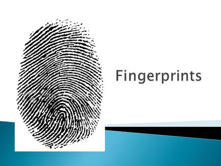  No two fingerprints the same? T or F ?  10 -12 points are compared to determine a statistical MATCH in the US  Points are called Minutia.