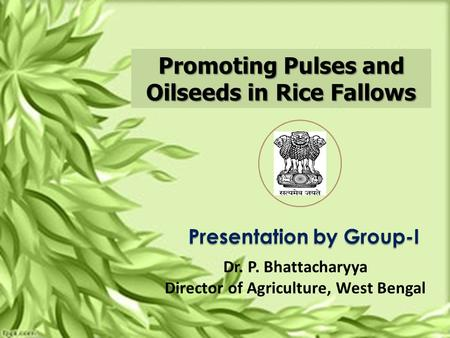 Promoting Pulses and Oilseeds in Rice Fallows Presentation by Group-I Dr. P. Bhattacharyya Director of Agriculture, West Bengal.