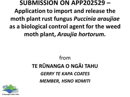 SUBMISSION ON APP202529 – Application to import and release the moth plant rust fungus Puccinia araujiae as a biological control agent for the weed moth.