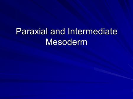 Paraxial and Intermediate Mesoderm. Mesodermal Regions Into what five regions do we subdivide the mesoderm? –prechordal plate mesoderm –chordamesoderm.