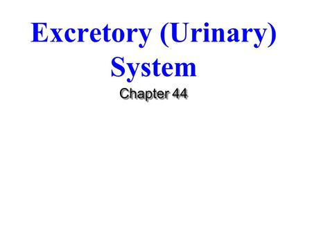Excretory (Urinary) System Chapter 44. Urinary Components Functions of Urinary System 1. Kidney Functions 2. Urine transport 3. Urine storage. 4. Excretion.