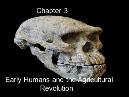 Early Humans and the Agricultural Revolution Chapter 3.