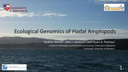 Ecological Genomics of Hadal Amphipods Heather Ritchie 1, Alan J. Jamieson 2 and Stuart B. Piertney 1 1 Institute of Biological and Environmental Sciences,