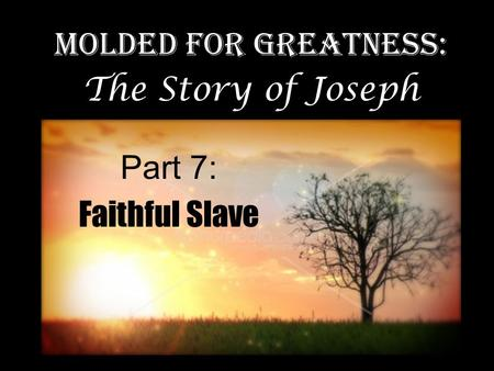 Molded for Greatness: The Story of Joseph Part 7: Faithful Slave.