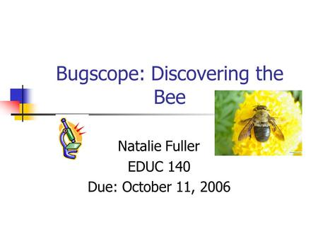 Bugscope: Discovering the Bee Natalie Fuller EDUC 140 Due: October 11, 2006.