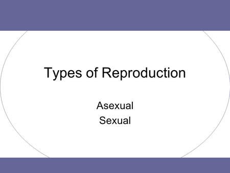 Types of Reproduction Asexual Sexual. Purpose of Reproduction To make sure a species can continue. –Definition: Reproduction is the process by which an.