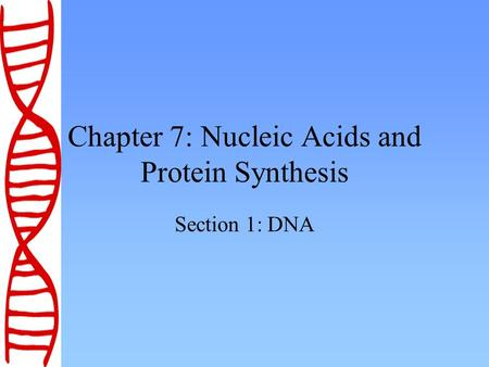 Chapter 7: Nucleic Acids and Protein Synthesis Section 1: DNA.