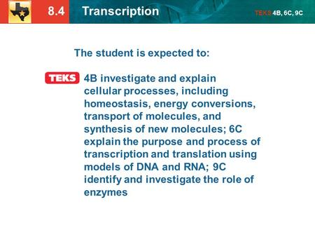 8.4 Transcription TEKS 4B, 6C, 9C The student is expected to: 4B investigate and explain cellular processes, including homeostasis, energy conversions,