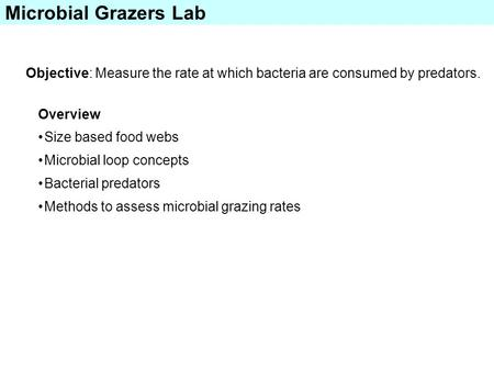 Microbial Grazers Lab Objective: Measure the rate at which bacteria are consumed by predators. Overview Size based food webs Microbial loop concepts Bacterial.