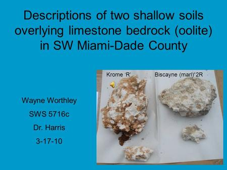 Descriptions of two shallow soils overlying limestone bedrock (oolite) in SW Miami-Dade County Wayne Worthley SWS 5716c Dr. Harris 3-17-10 Krome 'R' Biscayne.