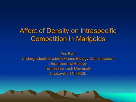 Affect of Density on Intraspecific Competition in Marigolds Eric Flatt Undergraduate Student (Marine Biology Concentration) Department of Biology Tennessee.