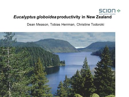 Eucalyptus globoidea productivity in New Zealand Dean Meason, Tobias Herrman, Christine Todoroki.