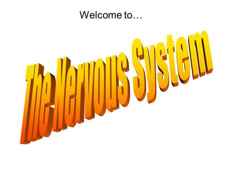 Welcome to… Nervous System Central Nervous System Peripheral Nervous System Parasympathetic Somatic Nerves Autonomic Nerves Spinal Cord Brain MotorSensorySympathetic.