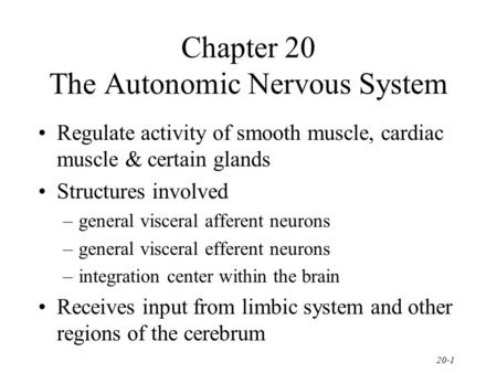 Chapter 20 The Autonomic Nervous System