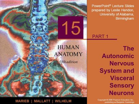 PowerPoint ® Lecture Slides prepared by Leslie Hendon, University of Alabama, Birmingham HUMAN ANATOMY fifth edition MARIEB | MALLATT | WILHELM 15 Copyright.