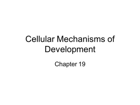 Cellular Mechanisms of Development Chapter 19. Developement Growth (cell division) Differentiation Pattern Formation Morphogenesis.