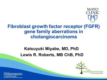 Fibroblast growth factor receptor (FGFR) gene family aberrations in cholangiocarcinoma Katsuyuki Miyabe, MD, PhD Lewis R. Roberts, MB ChB, PhD.