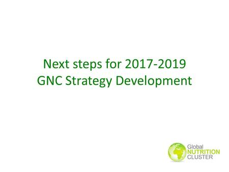 Next steps for 2017-2019 GNC Strategy Development.