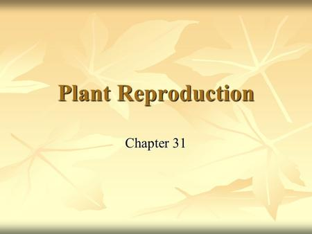 Plant Reproduction Chapter 31. Plants and Pollinators Pollen had evolved by 390 million years ago Pollen had evolved by 390 million years ago Sperm packed.