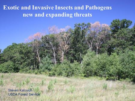 Steven Katovich USDA Forest Service Exotic and Invasive Insects and Pathogens new and expanding threats.