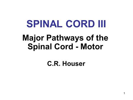 1 SPINAL CORD III Major Pathways of the Spinal Cord - Motor C.R. Houser.