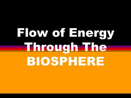Flow of Energy Through The BIOSPHERE. Importance of Solar Energy l All Organisms require energy for metabolism l The original source of energy in the.