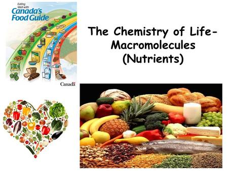 The Chemistry of Life- Macromolecules (Nutrients).