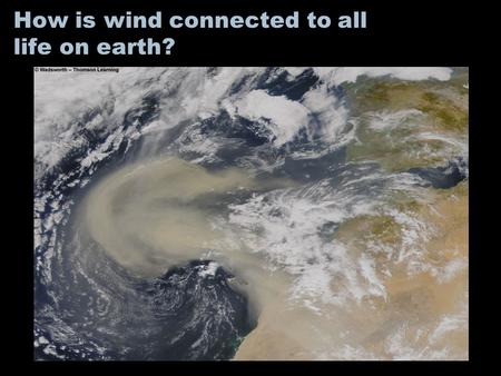 How is wind connected to all life on earth?. Why is one area of the earth's land surface a desert, and other a grassland, and another a forest? Why do.
