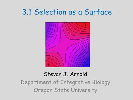 3.1 Selection as a Surface Stevan J. Arnold Department of Integrative Biology Oregon State University.
