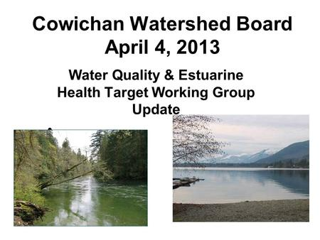 Cowichan Watershed Board April 4, 2013 Water Quality & Estuarine Health Target Working Group Update.