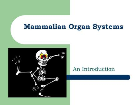 Mammalian Organ Systems An Introduction. Big Ideas 1. Groups of organs with specific structures & functions work together as systems, which interact with.