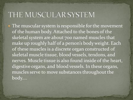 THE MUSCULAR SYSTEM The muscular system is responsible for the movement of the human body. Attached to the bones of the skeletal system are about 700.