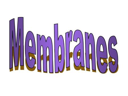 Membrane Different membranes –All have similar functions & structures –Plasma membrane separates inside of cell from outside of cell –Other membrane.