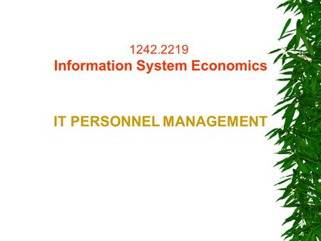 1242.2219 Information System Economics IT PERSONNEL MANAGEMENT.