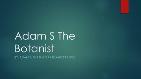 Adam S The Botanist BY: ADAM S. FOR THE GRASSLAND PRAIRIES.