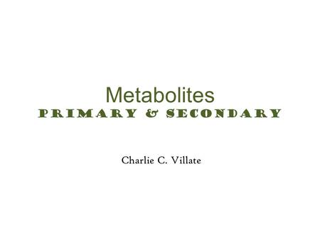 Metabolites Primary & Secondary Charlie C. Villate Greeting Prayer
