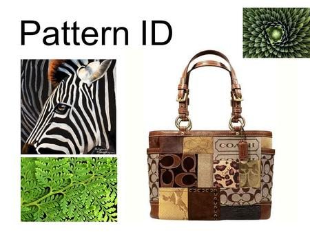 Pattern ID. pattern - The repetition of any thing — shapes, lines, or colors. We see patterns all around us! Patterns occur both in the man-made and natural.