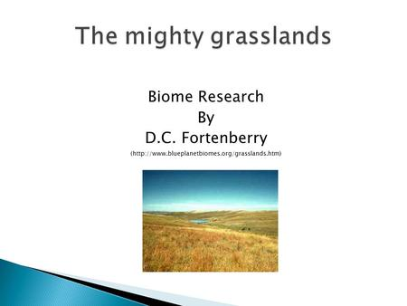 Biome Research By D.C. Fortenberry (http://www.blueplanetbiomes.org/grasslands.htm)