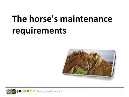 The horse's maintenance requirements 1. To help clients calculate feed rations for young horses, sport horses and all other types of horses, it is necessary.