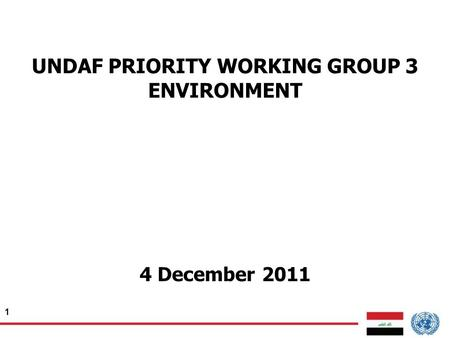 1 UNDAF PRIORITY WORKING GROUP 3 ENVIRONMENT 4 December 2011.