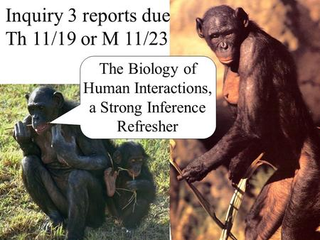 Inquiry 3 reports due Th 11/19 or M 11/23 The Biology of Human Interactions, a Strong Inference Refresher.