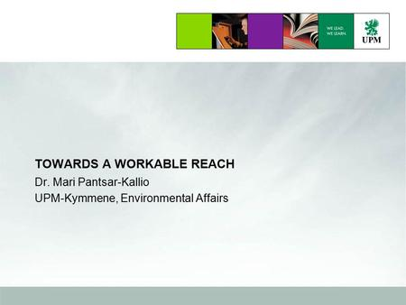 TOWARDS A WORKABLE REACH Dr. Mari Pantsar-Kallio UPM-Kymmene, Environmental Affairs.