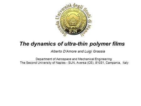 The dynamics of ultra-thin polymer films Alberto D'Amore and Luigi Grassia Department of Aerospace and Mechanical Engineering The Second University of.